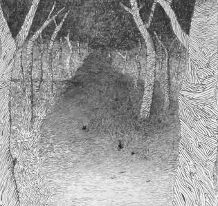 camino-en-el-bosque-por-carlos-hernc3a1ndez-iniesta-e1530610384629.jpg